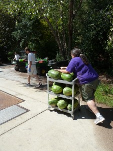 Aaron and Sherry putting watermelons away!