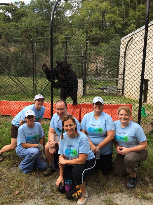 An amazing group from Biogen Idec helped us out with bear yard work