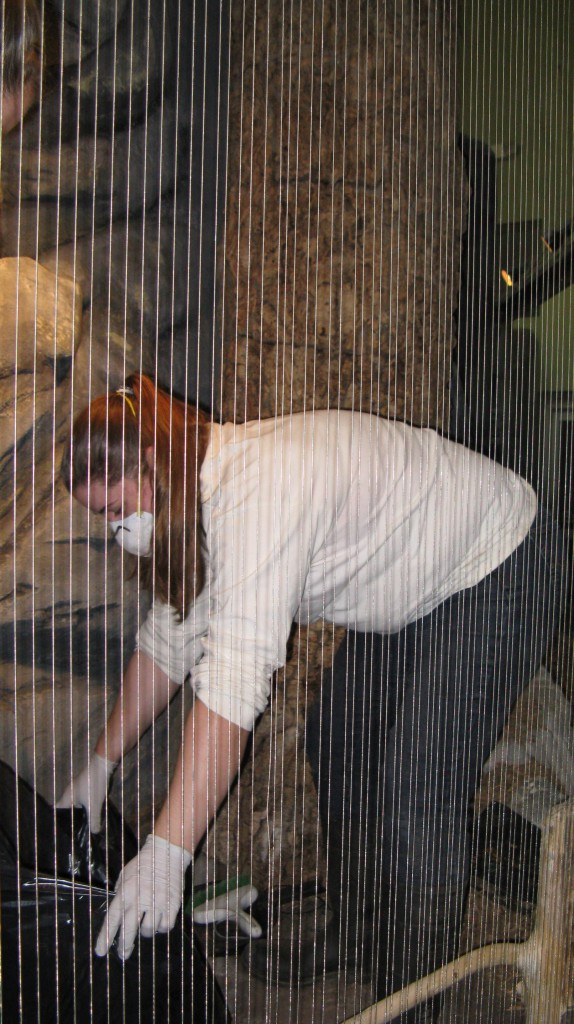 Carrie cleaning out the aviary.
